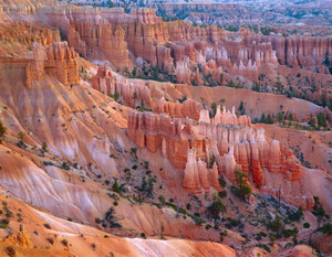 114 dawn sunset point bryce canyon national park utah.503.lightbox