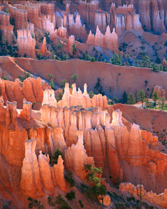116 dawn sunset point bryce canyon national park utah.505.lightbox