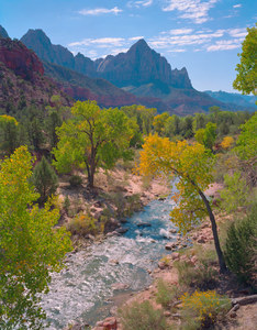 117 zion canyon utah.393.lightbox