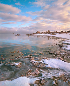 125 shoreline winter morning mono lake california.493.lightbox