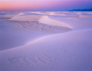 134 dawn 2 white sands new mexico.481.lightbox