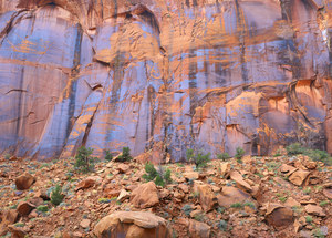185 hydes wall escalante utah 2011.465.lightbox