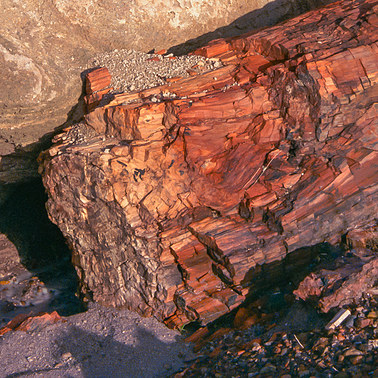 195 petrified forest arizona.450.detail