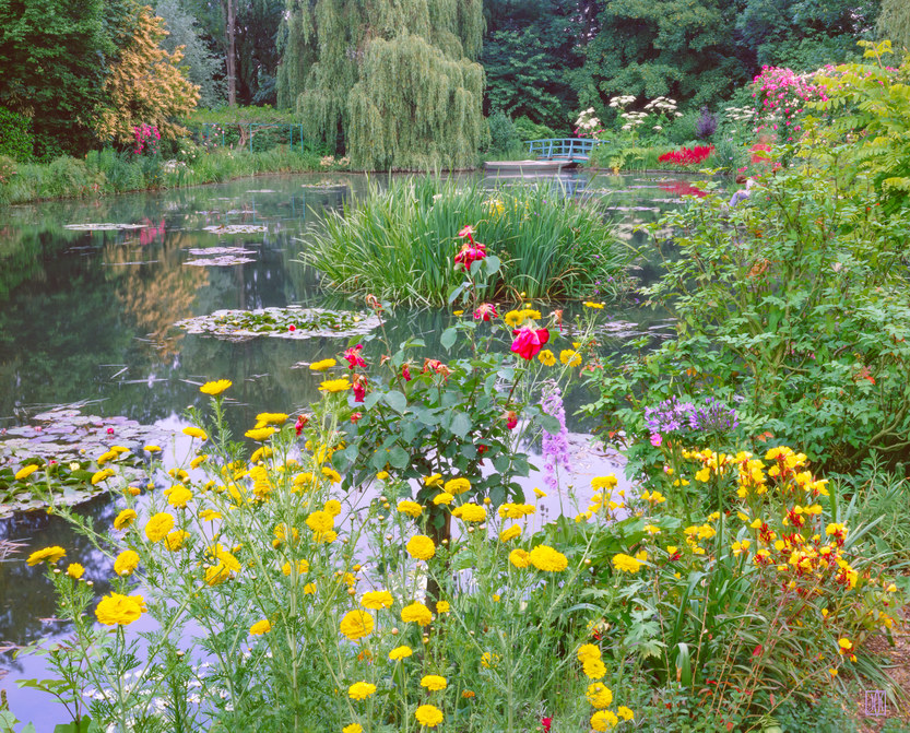 Janet in Monet\'s garden, Giverny, France - Find Images - Gallery ...