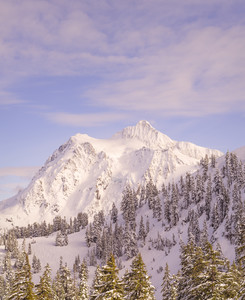 439 mount shuksan sunny ski day washington.658.lightbox