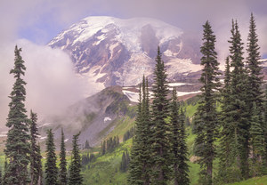 476 mount rainier washington.714.lightbox